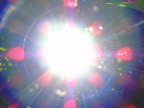 ©Text und Bilder www.lichtwesenfotografie.com