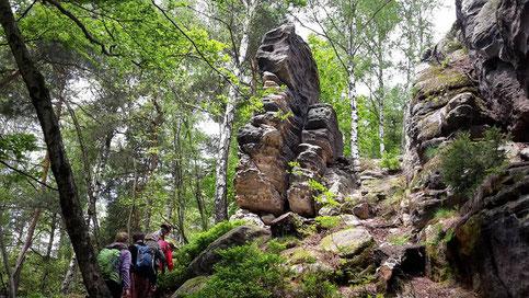 Petra Hinze Frauenwissen und Schamanismus: Reise ins Elbsandsteingebirge