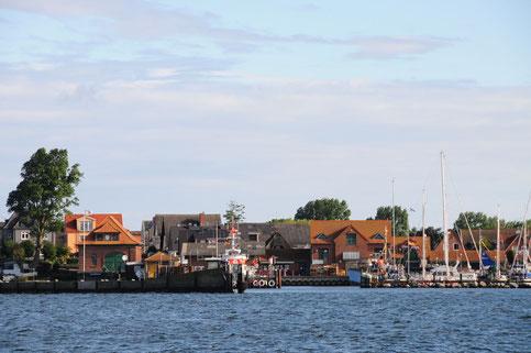 Maasholm, Fischereihafen