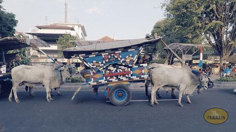 Kutschen in Yogyakarta