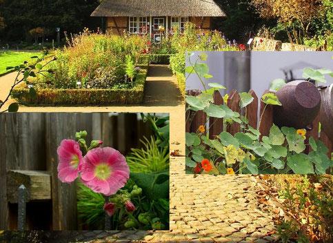 Bild: Pflanzenmarkt im Museusdorf am Kiekeberg