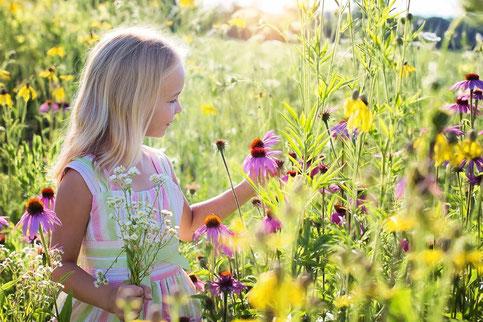 Hochsensibles Kind, Blumenwiese