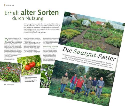 Fachbeiträge in Gartenpraxis (Ausg. 04/2019) und Kraut&Rüben (Ausg. 12/2019)