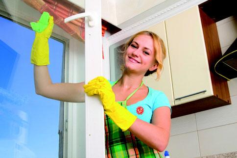 femme de ménage, femme de menage, aide ménagère, aide menagere, ménage, menage, ménage a domicile