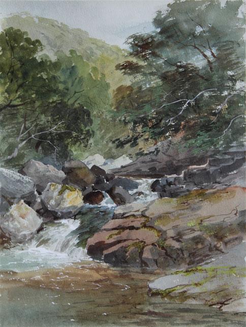 Karl Lang Archiv, Büsingen, Thomas Burton Watkin Forster TBWF Aquarell watercolor