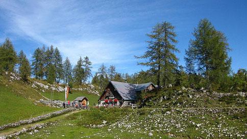 Trattberg - Moosangerlalm