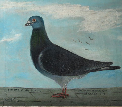 19th century naive folk art school.  Guernsey racing pigeon
