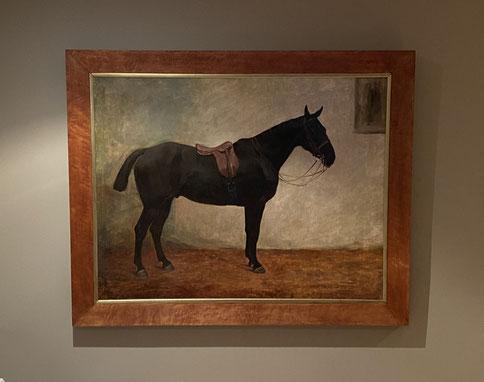 Margaret Collyer, Portrait of a Dark Bay Horse 1912