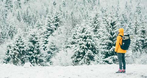 Wandererin im Wald mit metavirulent