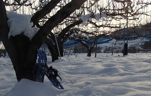 畑でスノーシュー
