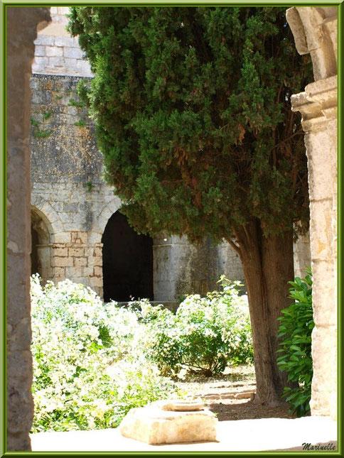 Une des baies du cloître de l'abbaye de Silvacane avec un vestige d'un pied de colonnette et vue sur le jardin intérieur, Vallée de la Basse Durance (13)