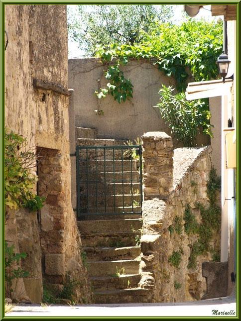 Maison à l'escalier au détour d'une ruelle, village de Cucuron, Lubéron (84)