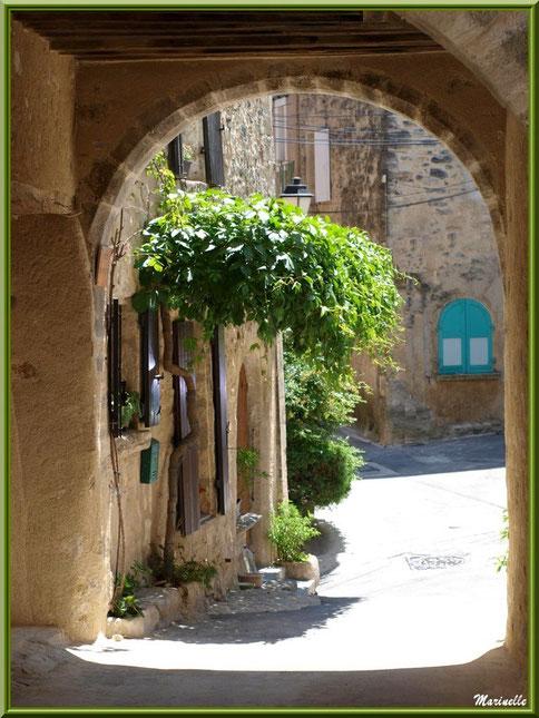 Soustet (porche dans une ruelle) et façade à la treille, village de Cucuron, Lubéron (84)