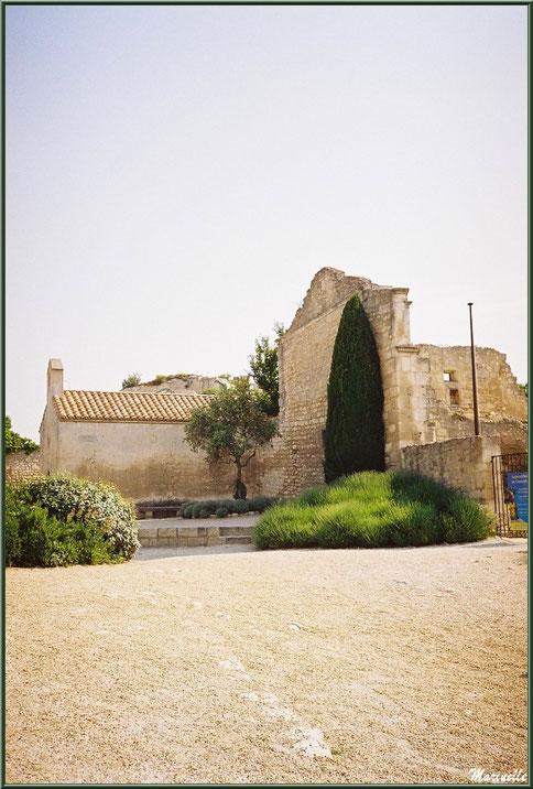 Placette aux lavandes et olivier avec un banc de pierre contre la Chapelle Saint-Blaise en fond et mur de l'hôpital Quiqueran à droite, Château des Baux-de-Provence, Alpilles (13)