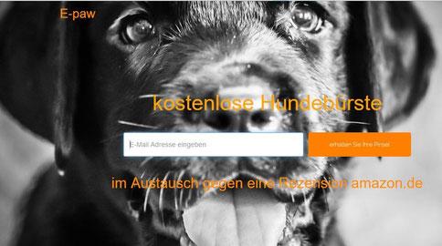 Chi-Love.de   BLOG   Magazin   Hundebuerste kostenlos  