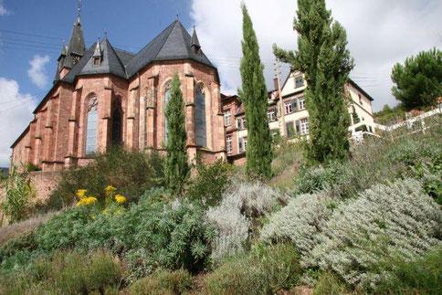 Unterhalb der Kirche von St. Martin erstreckt sich der Bibelgarten. Foto: Pfalz-Touristik