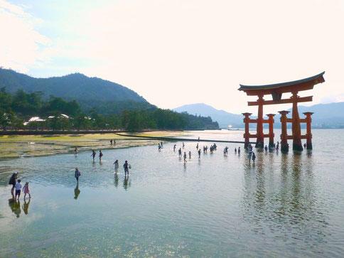 Miyajima: Das berühmte rote Tori im Wasser