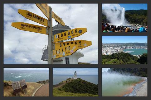 Drei Monate am anderen Ende: NEUSEELAND