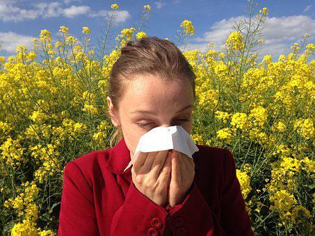 Allergene lösen allergische Reaktionen aus