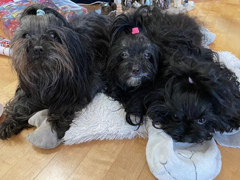 Darya & Hannah ... Weihnachten 2020 ...