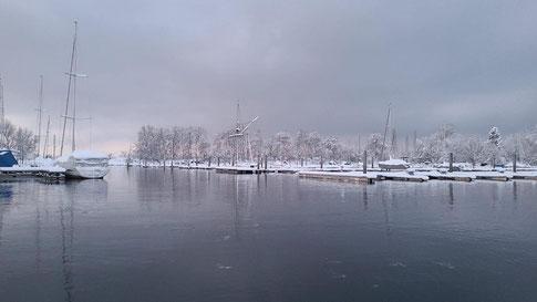Still ruht der See Januar 2021