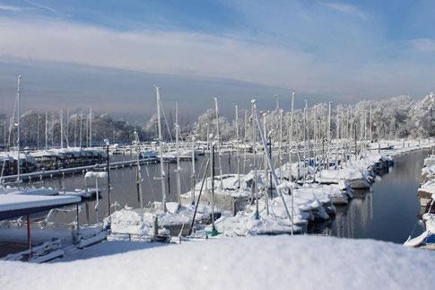 Winterlandschaft_Januar 2021
