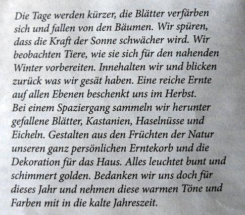 Kraut+Fotografie, krautfotografie.com, Schreiberei, Text, Herbstzeit, Dornbirn, Andrea Blum