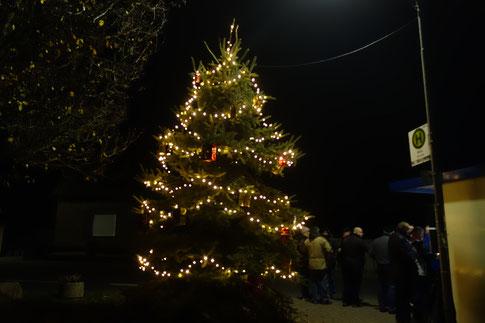 Weihnachtsbaum zum Ersten Advent