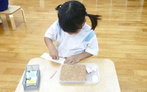 モンテッソーリの個別活動で、年中の幼稚園児が、縫いさしの活動に集中して取り組んでいます。