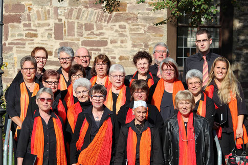 Die Sängerinnen und Sänger vom Volkschor Hümme (Foto: Reinhold Siebert).
