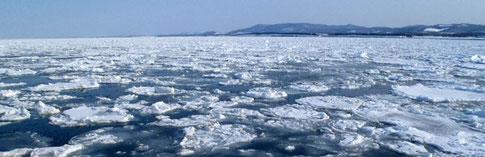 紋別港外の流氷