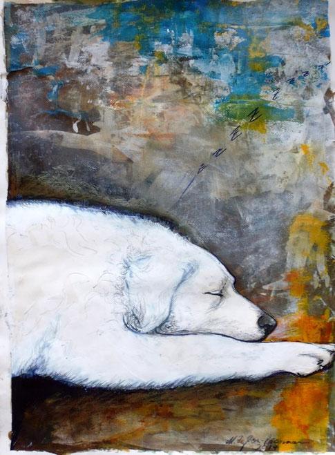 Bild schlafender Kuvasz