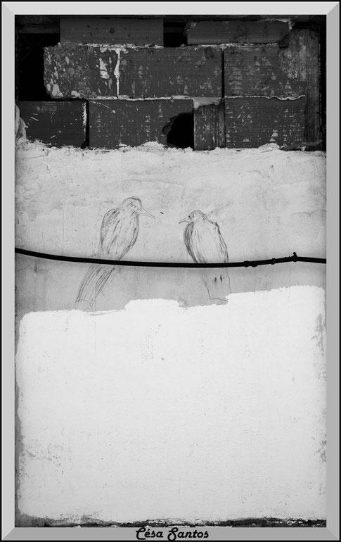 Palomas dibujadas en una pared posadas sobre un cable.