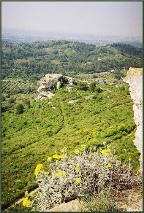 Vue panoramique sur la vallée (oliveraies, immortelles et ajoncs en fleurs...) depuis l'esplanade du château, Château des Baux-de-Provence, Alpilles (13)