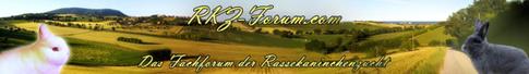 RKZ Forum