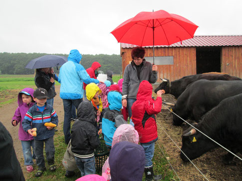 Die Kinder vom Donauer Kinderhaus aus Neumarkt besuchten in den Pfingstferien die Viecherei. Trotz Regenschauer hatten sie großen Spaß und lernten nebenbei viel über die Tiere.