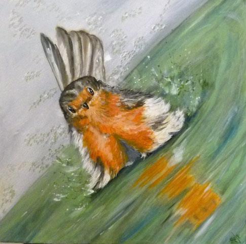 26.Splashing robin 60x60 cm  foto van André Henschen collega