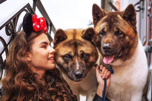 #puppies #american_akita