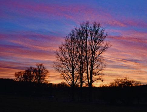 Sonnenuntergang über den Weiden