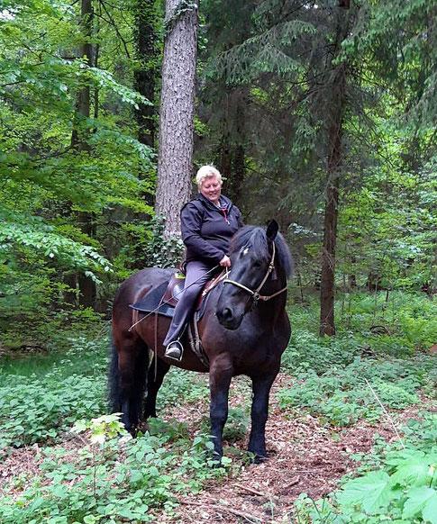 Mit Willi am Sidepull im Gelände