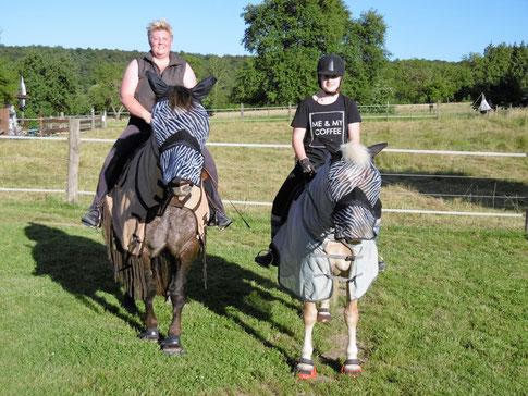 Zwei Zebra-Ponys ;-)