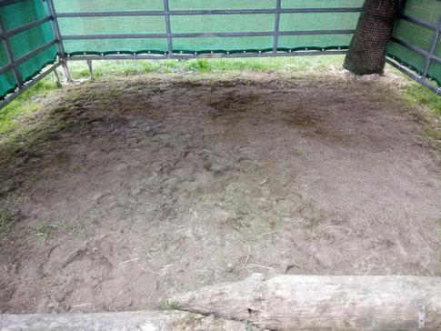 Der Lehmboden im Weidezelt