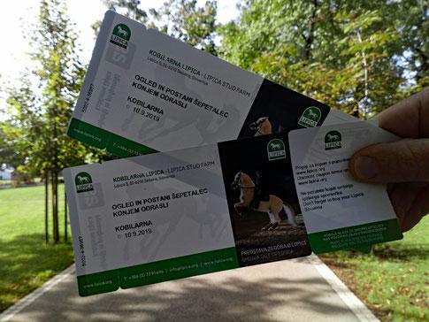 Besuch des Lipizzaner-Gestüts in Lipica, Slowenien