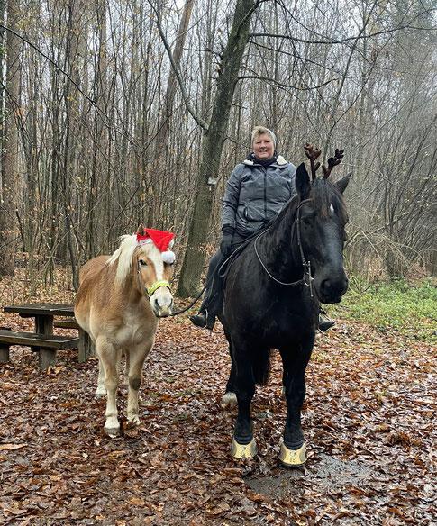 Ein Nikolaus-Hafi und ein Rentier-Nori