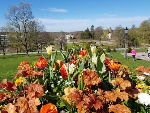 Der Frühling ist in Uppsala angekommen