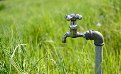 Wie viel Wasser brauch der Rasen?