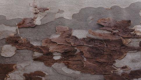 Sans titre  Tirage pigmentaire sur papier Fine Art, 1/3 , 30 x 54 cm