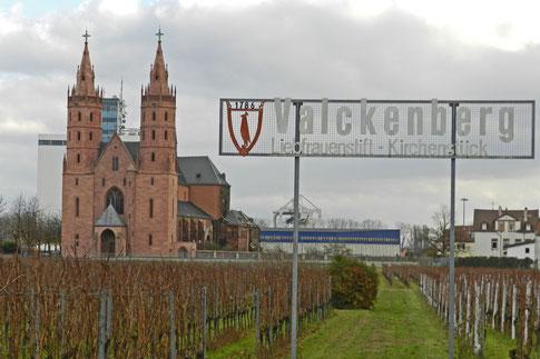 Церковь Милой Дамы Вормс виноградник Либфраумильх