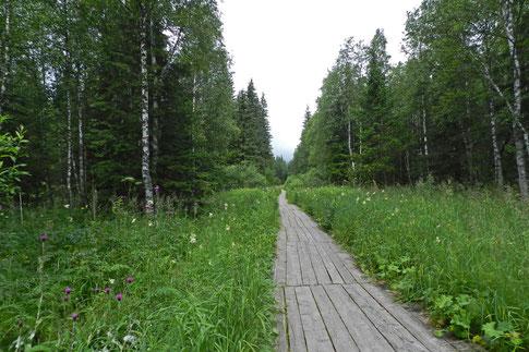 Wanderweg Ural Sjuratkul