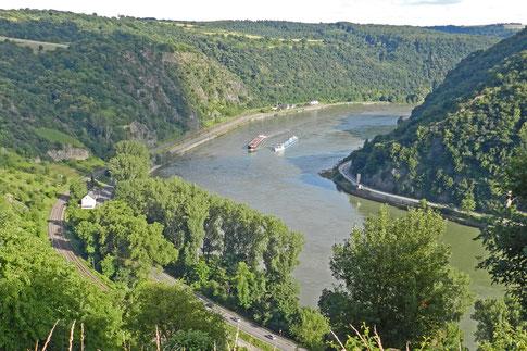 Рейнская долина  летом
